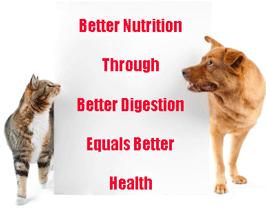 Probiotics for pets 1